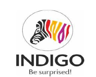 Indigo Paints IPO opens on 20th January – Will this company paint your portfolio in Green?